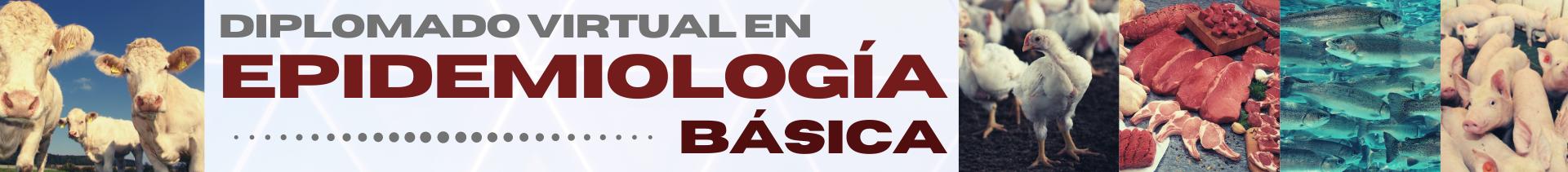 BANNER_DIPLOMADO_EPIDEMIOLOGÍA_BÁSICA.