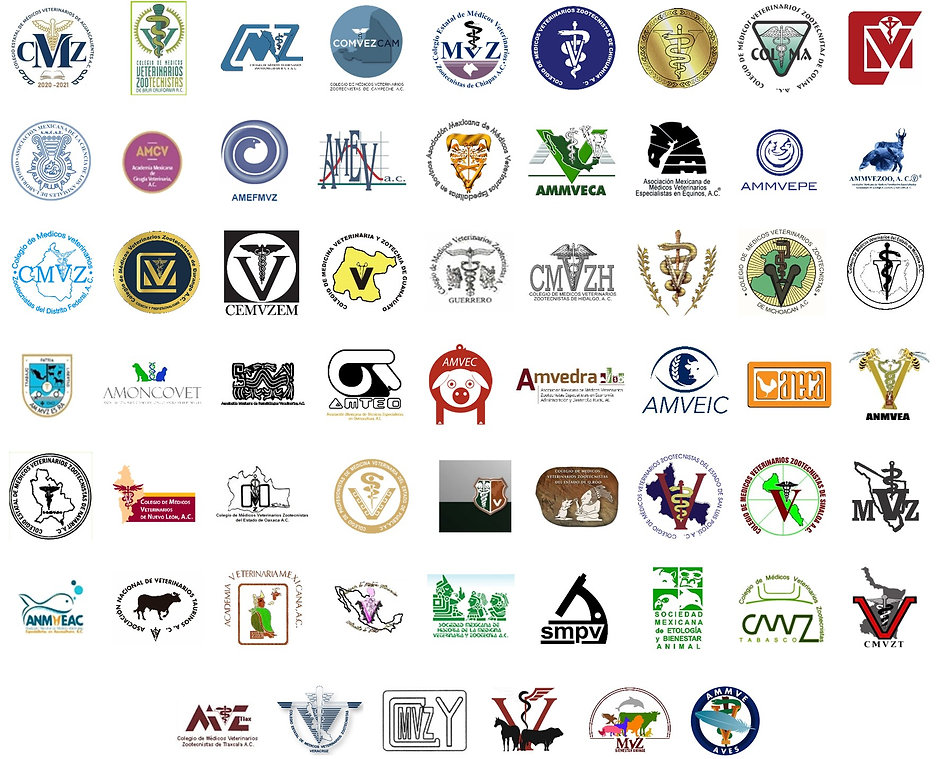 Logos socios FedMVZ.jpg
