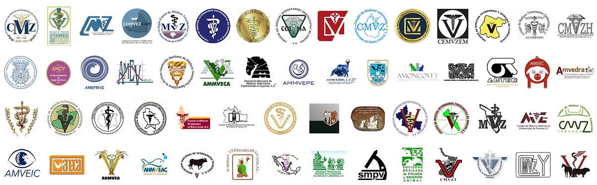Logos socios FedMVZ 1.jpg
