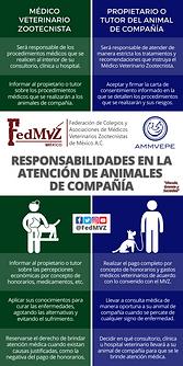 RESPONSABILIDADES ANIMALES DE COMPAÑÍA