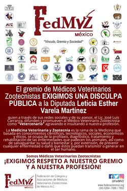 DISCULPA_PÚBLICA_LETICIA_VARELA