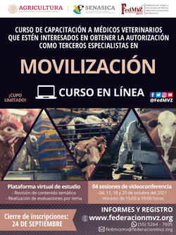 CURSO MOVILIZACIÓN EN LÍNEA OCTUBRE 2021