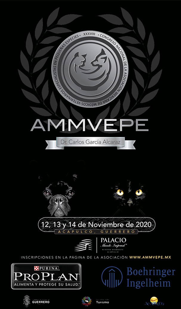 Congreso AMMVEPE nov 2020