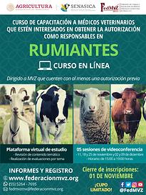 CURSO_RUMIANTES_EN_LÍNEA_NOVIEMBRE.png