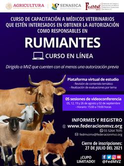 CURSO RUMIANTES EN LÍNEA AGOSTO 2021