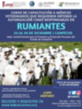 CURSO MVRA RUMIANTES CAMPECHE 03 AL 06 D