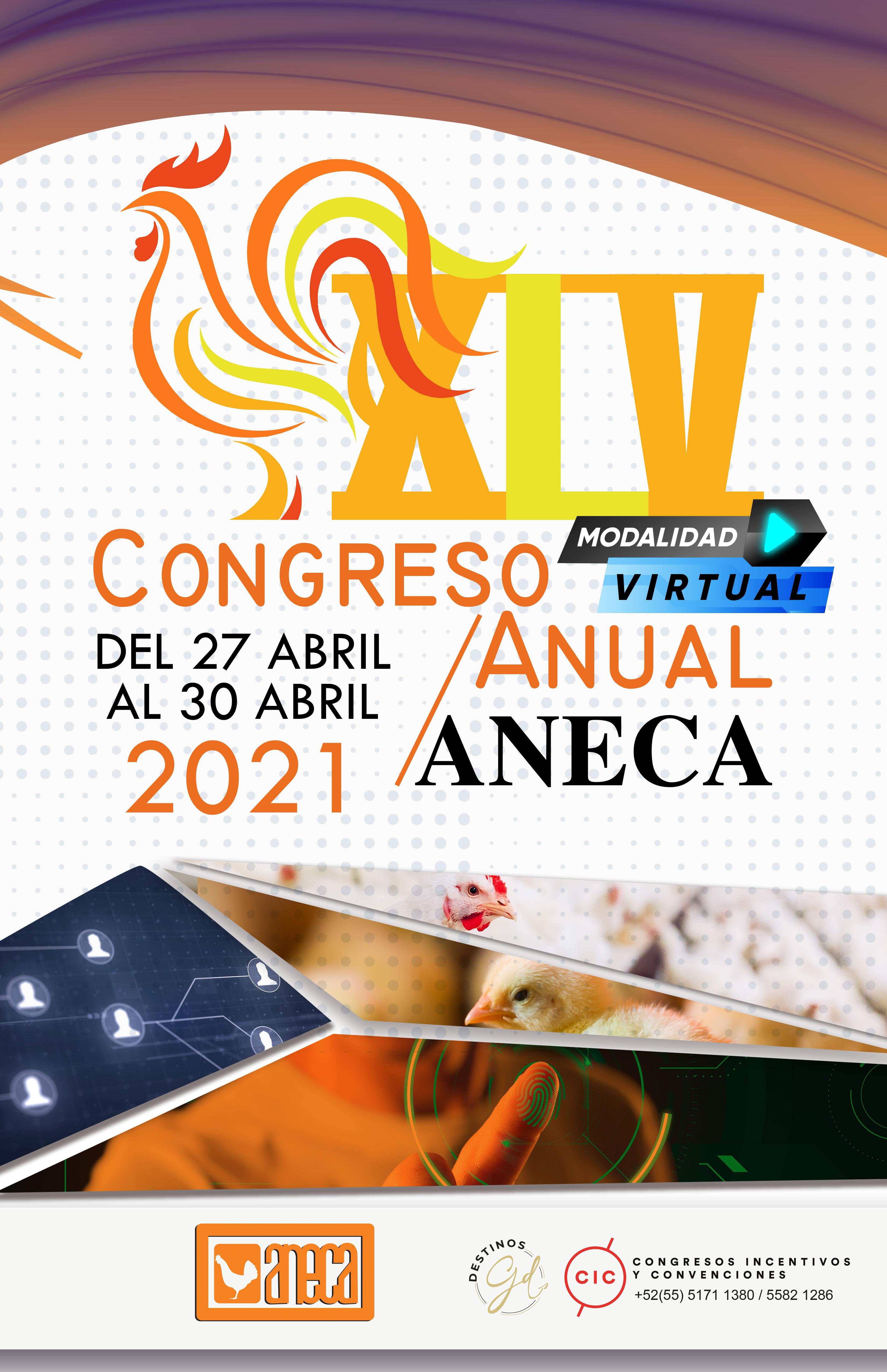 ANECA-2021-POSTER