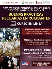 CURSO BPP RUMIANTES EN LÍNEA SEPTIEMBRE 2021.png