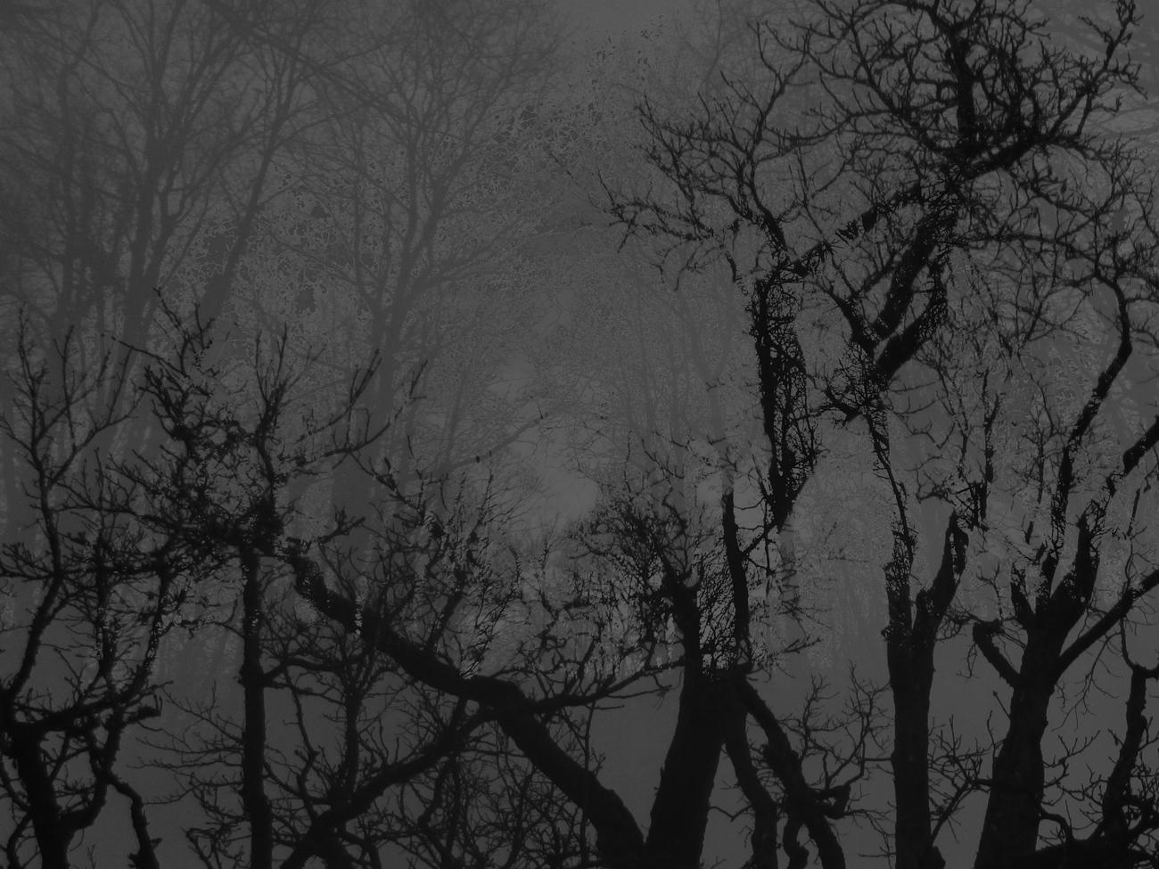 Freiheit für Dunkelheit 12