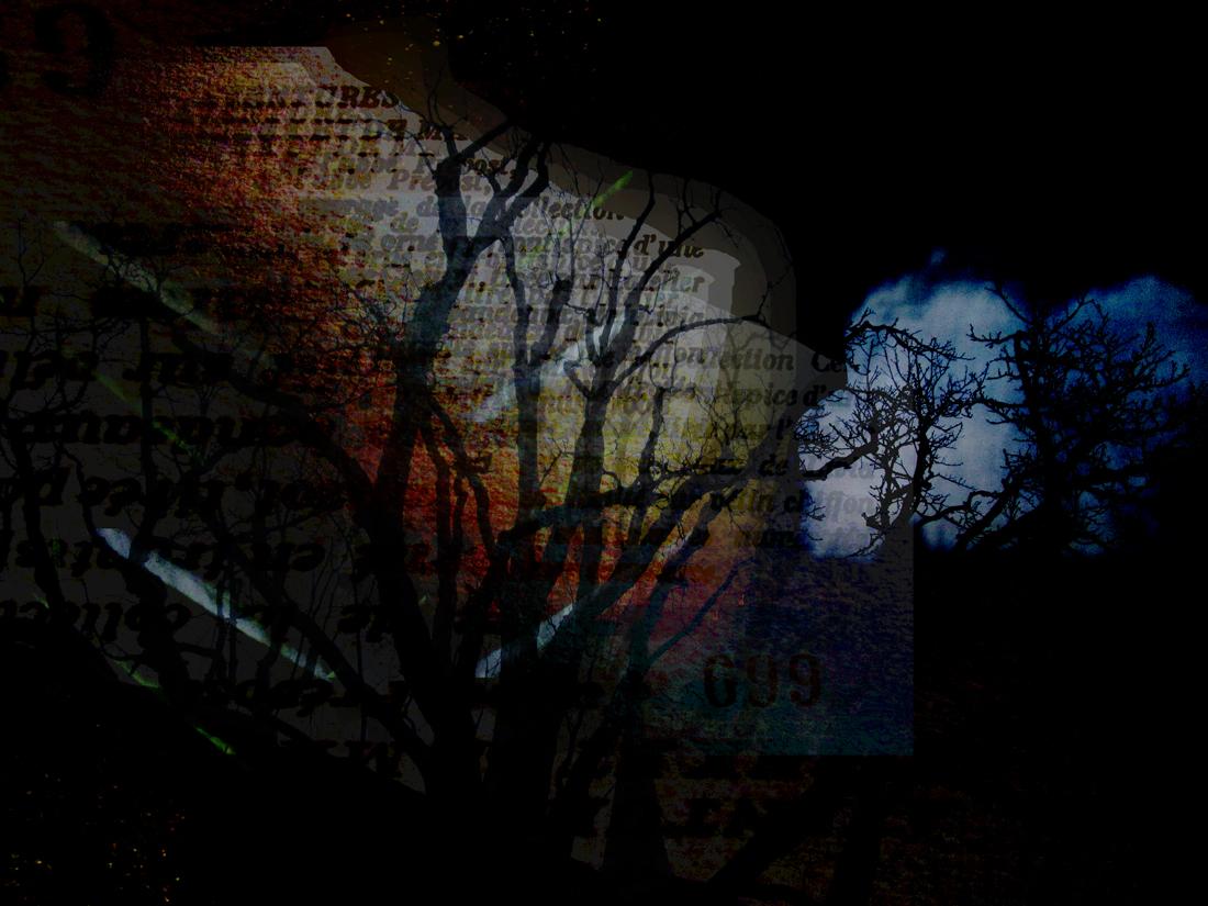 Freiheit für Dunkelheit 4