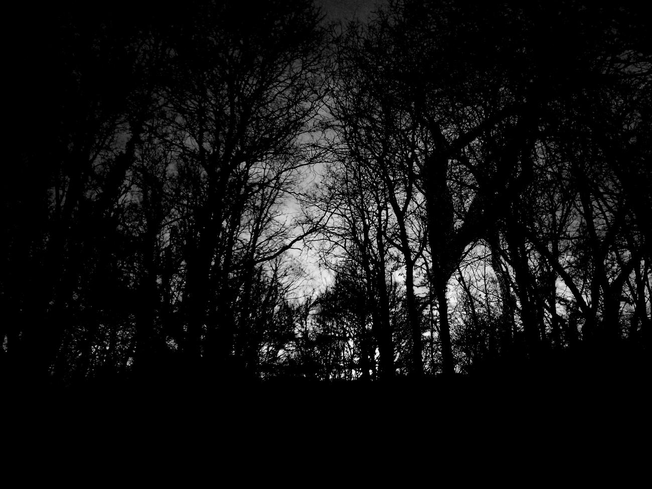 Freiheit für Dunkelheit 7