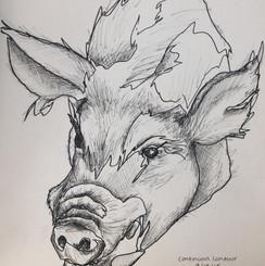 Boar Bust