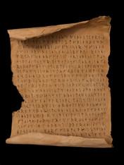 Scroll and Treasure Map