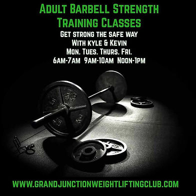 Adult Barbell.JPG