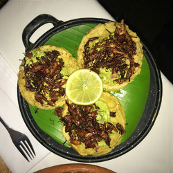 Sopes with grasshoppers!
