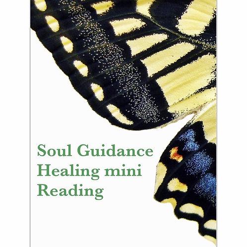 Soul. Healing mini Reading