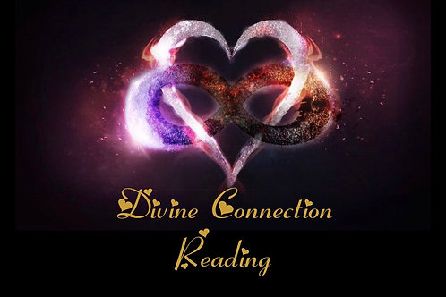 Divine Connection  Reading- In Depth