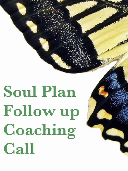 60 Min soul plan follow up call