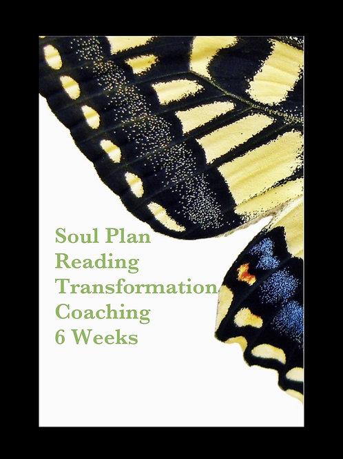 6 weeks Soul Plan Transformation Coaching