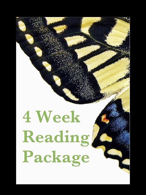 4 weeks reading package