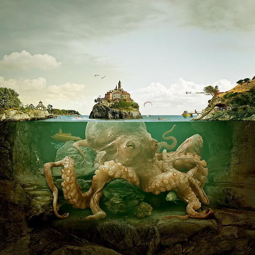 iceberg octopus.webp