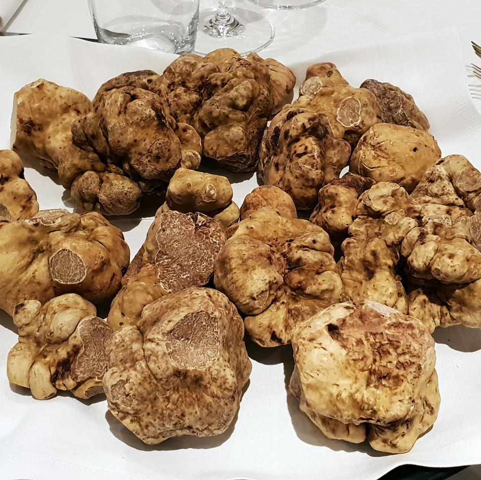 white-truffle-20190115_133354.jpg