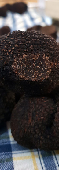 black-Truffle-20190123_140002.jpg