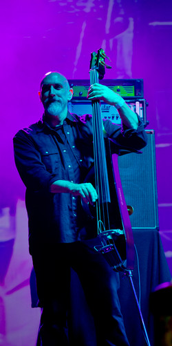 bass player with Jools Holland
