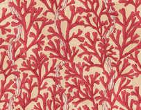 bladderwrack - Red