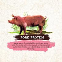 key benefits inception pork -- more bene