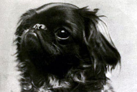 Headshot of an early 20th-century Ruby S