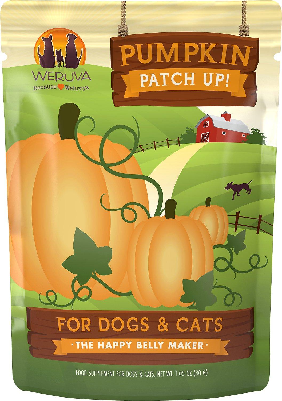 Pumpkin Patch Up