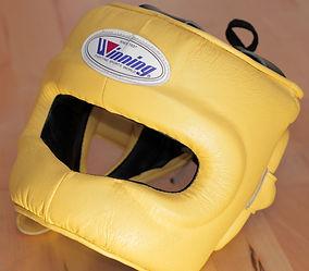 Boxing Head Gear.jpg