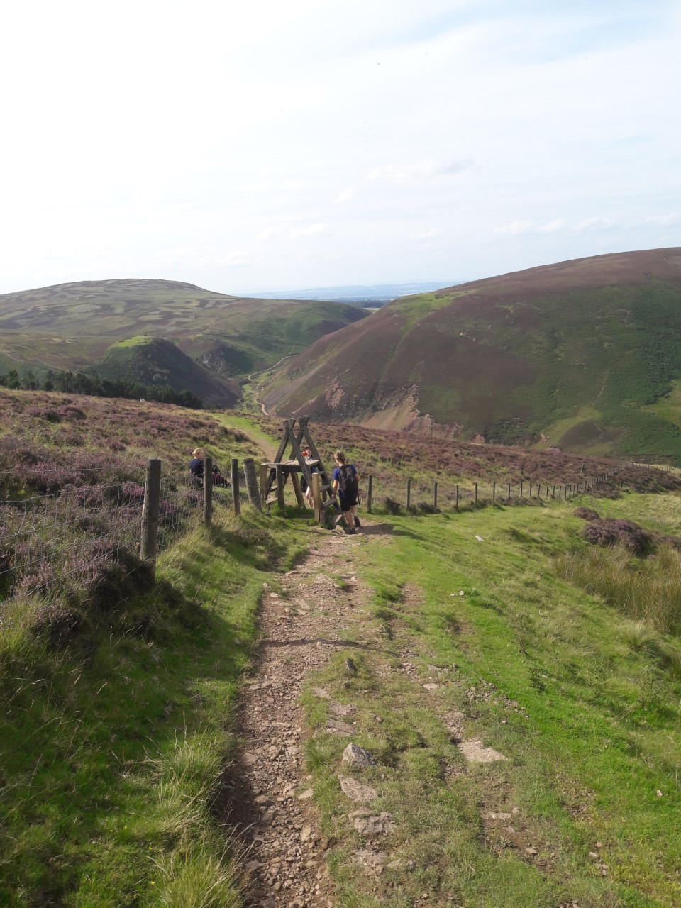 Scald Law hill, Pentlands
