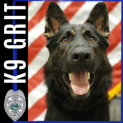 The Grit Foundation Introduces K9 Grit