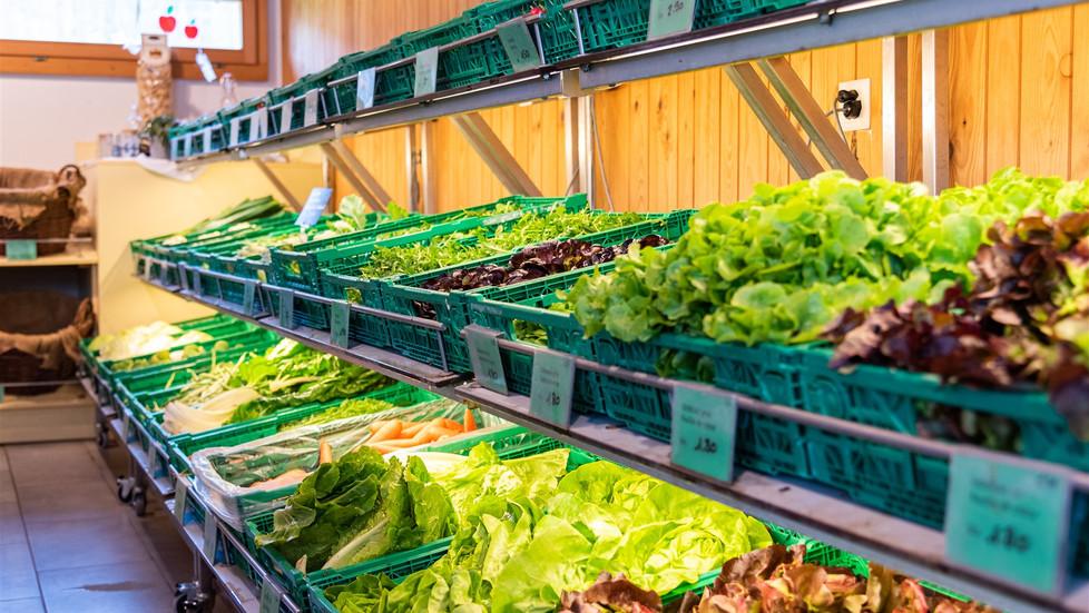 Regionale Früchte und Gemüse finden Sie in unserem Hofladen