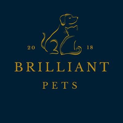 brilliant pets