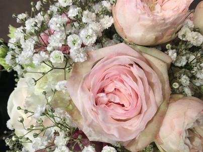 Blumen Monika Linder
