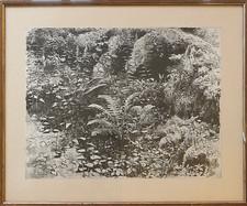 193  (verkauft)
