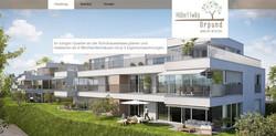 homepage_für_immobilien_überbauung