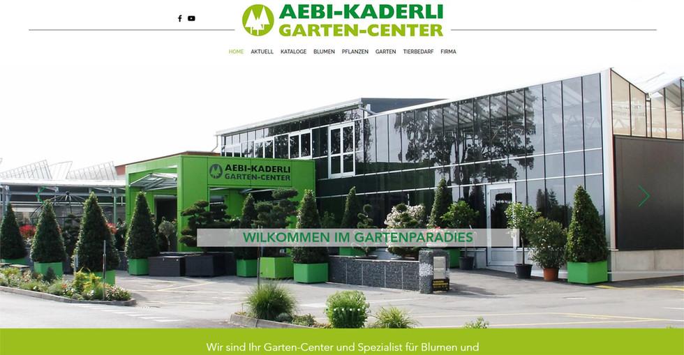 webdesign in duedingen freiburg fuer aeb