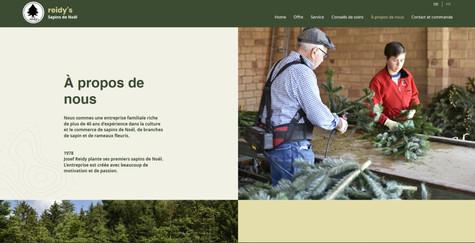 webdesign pour reidys sapins de noel