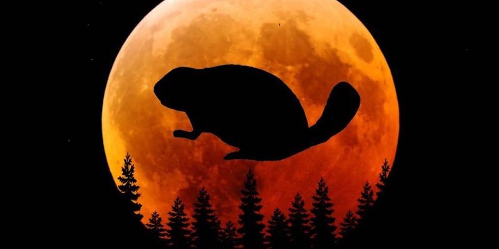 Full Beaver Moon Circle