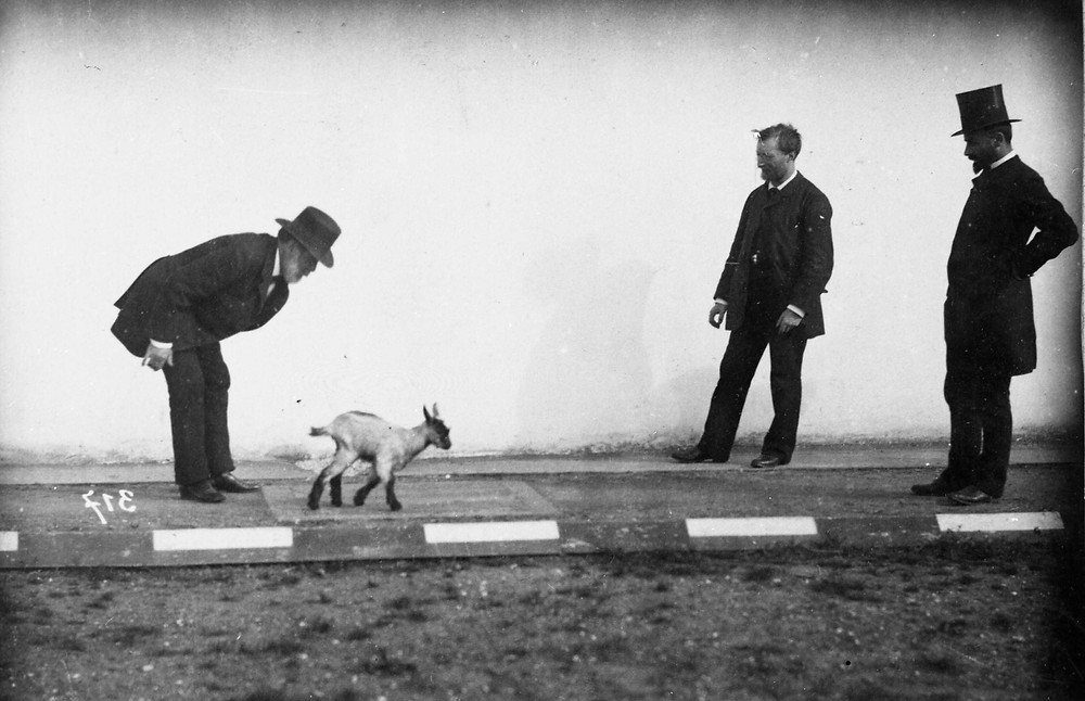 """E. J. Marey and G. Demenÿ at the Station Physiologique"""", 1887, Marey Musem, Beaune, France,. Photo: J.-D. Lajoux."""