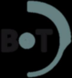 B&T USA website