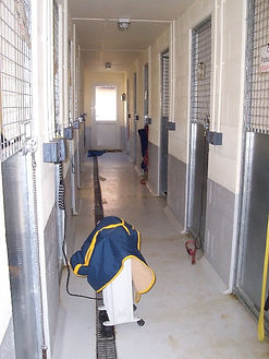 new dog kennels PACT