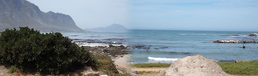 Bettys Bay South Africa