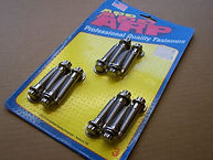 ARP Stainless steel inlet manifold bolts