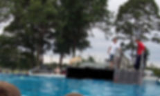 golden retriever  jump pool