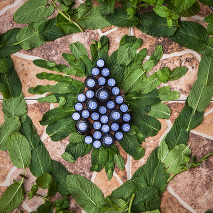 Peppermint WYV pic-1.jpg